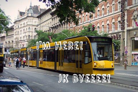 scumbag budapest tram
