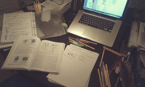 Study spread