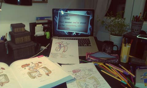 AnatomyCramming0411