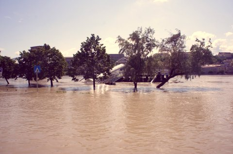 flood9