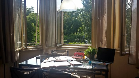 Study spot