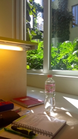 Sunny study spot in the library