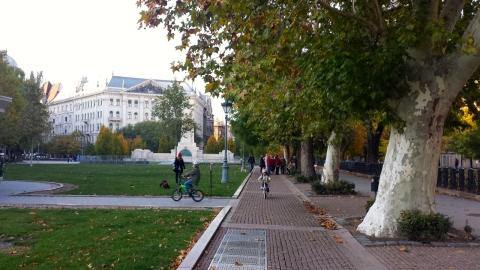 Bildedryss - Oct 2013 - 28