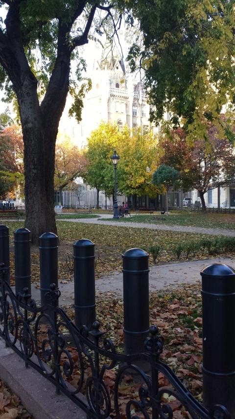 Bildedryss - Oct 2013 - 30