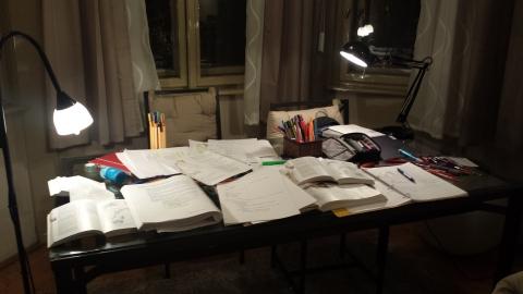 Skjalg and my weekend cramming spread