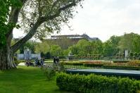 Vienna 2014 - 06