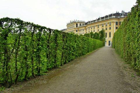 Vienna 2014 - 47