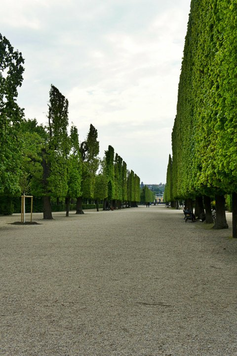 Vienna 2014 - 63