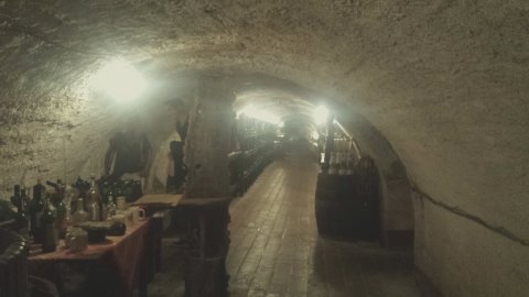 It was really difficult to take pictures that capture the pure beauty of this wine cellar.  It is 220 years old and 600 sq. meters. It stays at a constant 15 degrees, winter and summer. Makes for slightly chilled red wine, but it was delicious nonetheless.