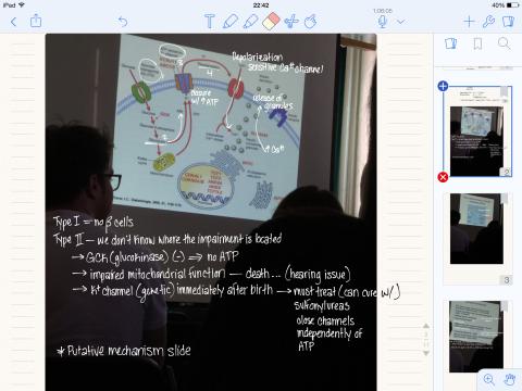 LectureEx2