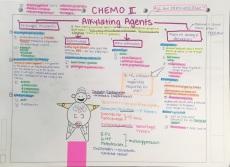B34-39 Chemo2