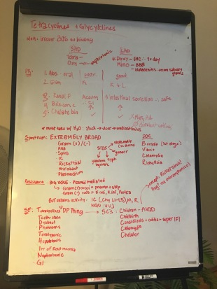 White board review!!