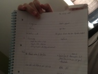 Current bedtime reading: Amir's Step 1 notes